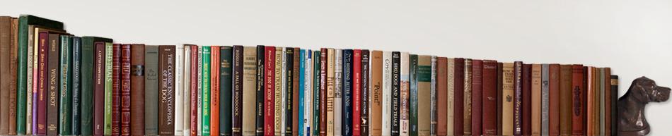 Bird Dog Bookshelf