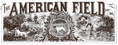 1941 American Field