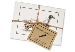 Pointer Setter Notecards