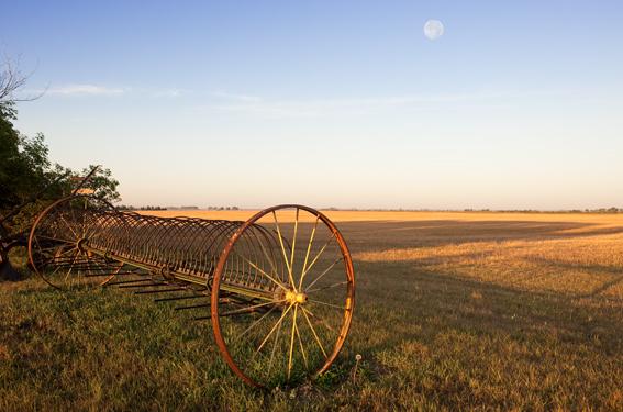 Prairie_28