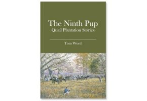 The Ninth Pup
