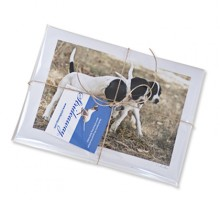 Pointer Puppy Notecards_stack