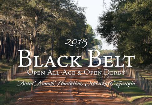 2015 Black Belt Photos_CM