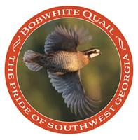 Bobwhite Quail decal