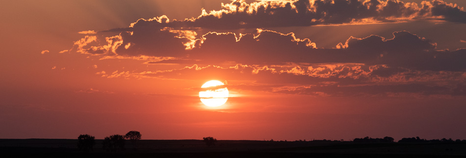 HPBanners255_2020-SD-Sunrise